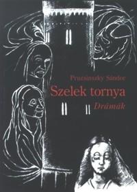 Pruzsinszky Sándor: Szelek tornya
