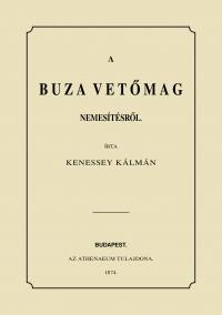 Kenessey Kálmán: A búza vetőmag nemesítésről
